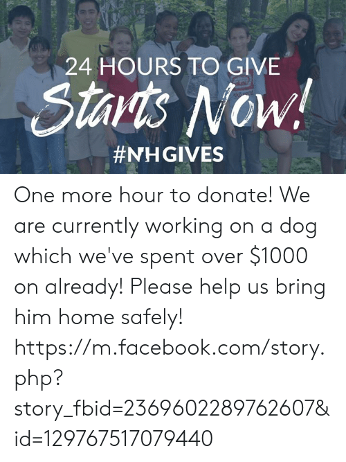 Facebook, Memes, and facebook.com: 24 HOURS TO GIVE  Starts Now!  One more hour to donate! We are currently working on a dog which we've spent over $1000 on already! Please help us bring him home safely!   https://m.facebook.com/story.php?story_fbid=2369602289762607&id=129767517079440