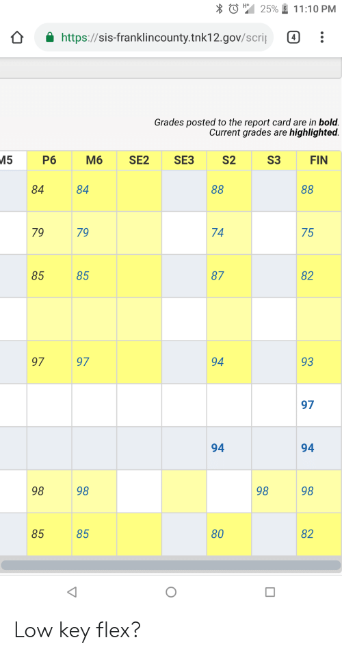 Flexing, Low Key, and Bold: 25% 11:10 PM  https://sis-franklincounty.tnk12.gov/scri:  Grades posted to the report card are in bold  Current grades are highlighted  P6  M6 SE2 SE3  S2  S3  FIN  84  84  79  79  74  75  85  85  87  82  97  97  94  93  97  94  94  98  98  98  98  85  85  80  82 Low key flex?