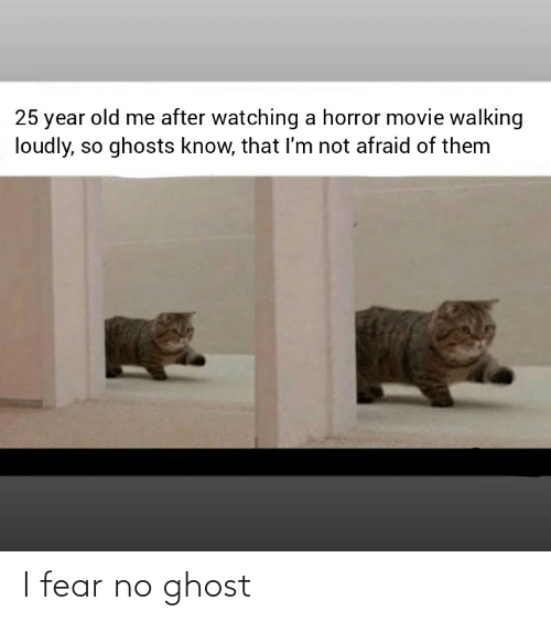 Reddit, Ghost, and Movie: 25 year old me after watching a horror movie walking  loudly, so ghosts know, that I'm not afraid of them I fear no ghost
