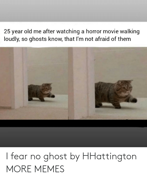 Dank, Memes, and Target: 25 year old me after watching a horror movie walking  loudly, so ghosts know, that I'm not afraid of them I fear no ghost by HHattington MORE MEMES