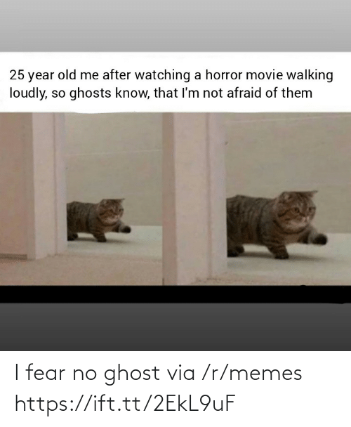 Memes, Ghost, and Movie: 25 year old me after watching a horror movie walking  loudly, so ghosts know, that I'm not afraid of them I fear no ghost via /r/memes https://ift.tt/2EkL9uF