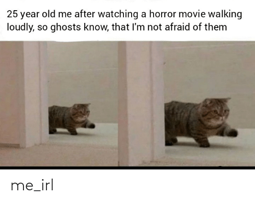 Movie, Old, and Irl: 25 year old me after watching a horror movie walking  loudly, so ghosts know, that l'm not afraid of them me_irl