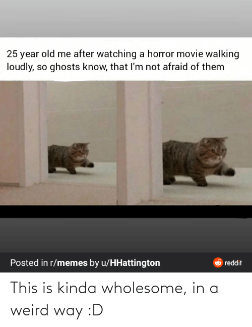 Memes, Reddit, and Weird: 25 year old me after watching a horror movie walking  loudly, so ghosts know, that I'm not afraid of them  Posted in r/memes by u/HHattington  6 reddit This is kinda wholesome, in a weird way :D