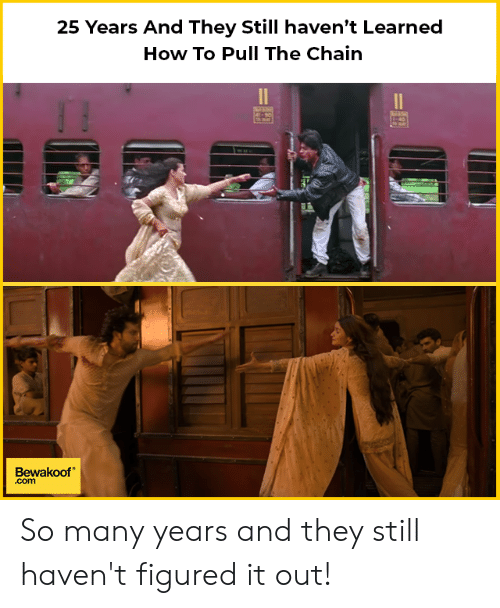 Memes, How To, and 25 Years: 25 Years And They Still haven't Learned  How To Pull The Chain  殖  Bewakoof  .com So many years and they still haven't figured it out!