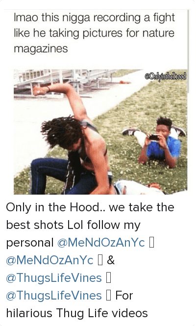 Life, Lol, and Phone: Imao this nigga recording a fight like he taking pictures for nature magazines Only in the Hood.. we take the best shots-Lol follow my personal-@MeNdOzAnYc 💸-@MeNdOzAnYc 💸-&-@ThugsLifeVines 🌱-@ThugsLifeVines 💣-For hilarious Thug Life videos