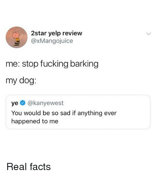 Facts, Fucking, and Memes: 2star yelp review  @xMangojuice  me: stop fucking barking  my dog  ye @kanyewest  You would be so sad if anything ever  happened to me Real facts
