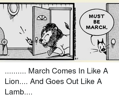 March Comes In Like And Goes Out Like >> 31 Must Be March March Comes In Like A Lion And Goes Out Like A Lamb