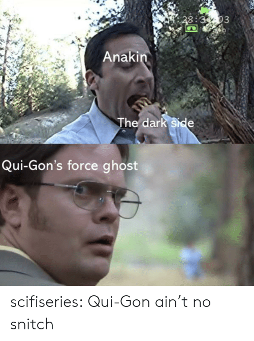 Snitch, Tumblr, and Blog: 3:3-03  Anakin  The dark side  Qui-Gon's force ghost scifiseries:  Qui-Gon ain't no snitch