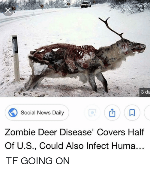 Deer, Memes, and News: 3 da  Social News Daily  Zombie Deer Disease' Covers Half  Of U.S., Could Also Infect Huma.. TF GOING ON