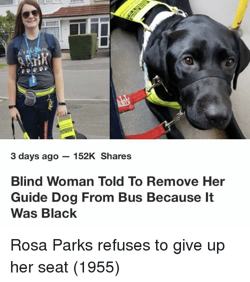 Rosa Parks, Black, and Her: 3 days ago - 152K Shares  Blind Woman Told To Remove Her  Guide Dog From Bus Because It  Was Black Rosa Parks refuses to give up her seat (1955)
