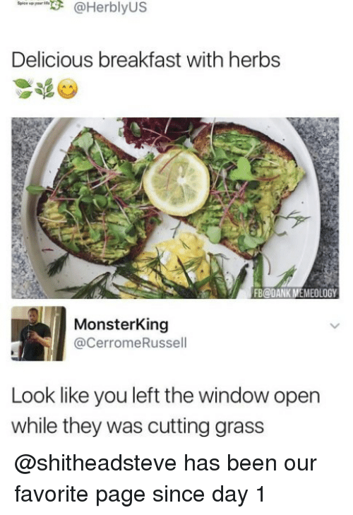 Dank, Memes, and Breakfast: 3 @Her bly US  Delicious breakfast with herbs  FB@DANK M  EMEOLOGY  Monsterking  @Cerrome Russell  Look like you left the windowopen  while they was cutting grass @shitheadsteve has been our favorite page since day 1