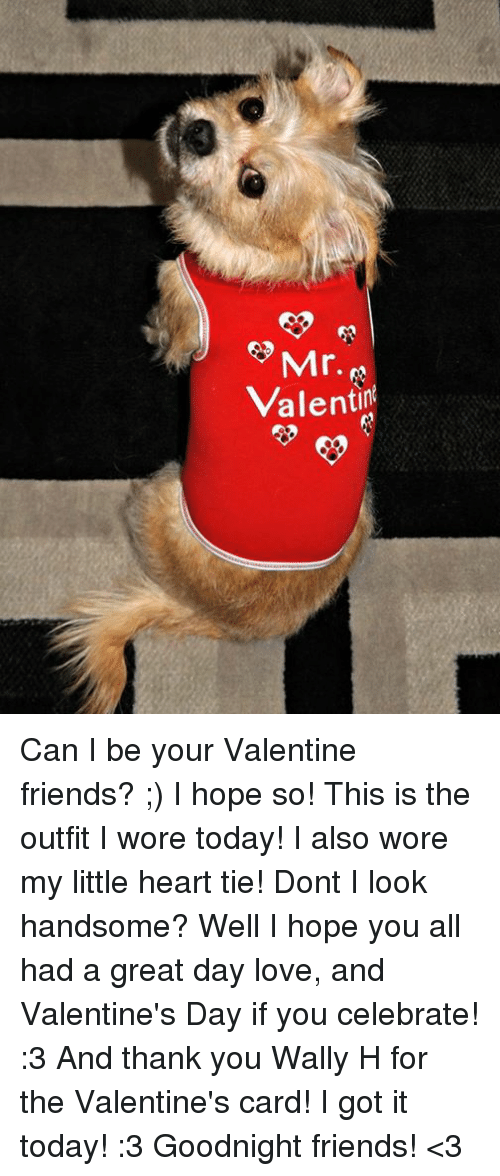 Memes, 🤖, and My Little: 3 Mr.  Valenti Can I be your Valentine friends? ;) I hope so! This is the outfit I wore today! I also wore my little heart tie! Dont I look handsome? Well I hope you all had a great day love, and Valentine's Day if you celebrate! :3 And thank you Wally H for the Valentine's card! I got it today! :3 Goodnight friends! <3