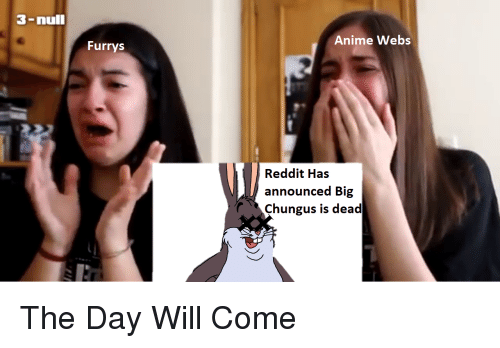 3-nulI Anime Webs Furrys Reddit Has Announced Big Chungus Is