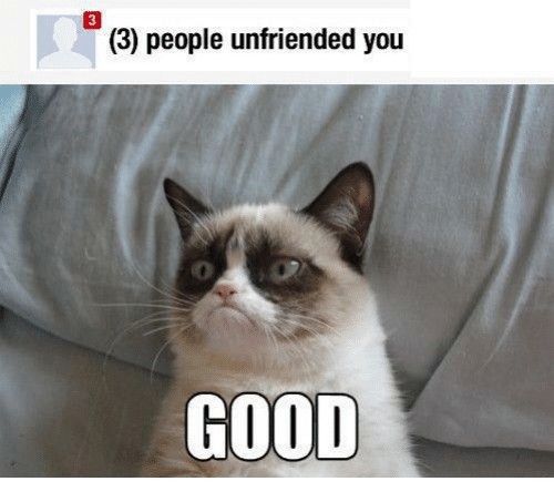 3 people unfriended you good 16715302 3 people unfriended you good grumpy cat meme on me me