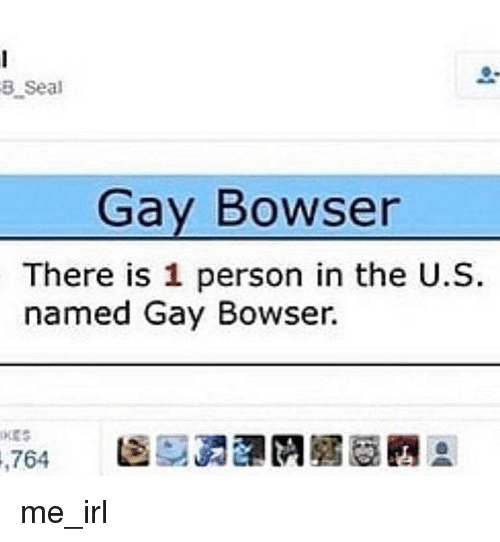 Bowser, Seal, and Irl: 3 Seal  Gay Bowser  There is 1 person in the U.S  named Gay Bowser.  704  圇硬勇瀾們眉眉豳® me_irl