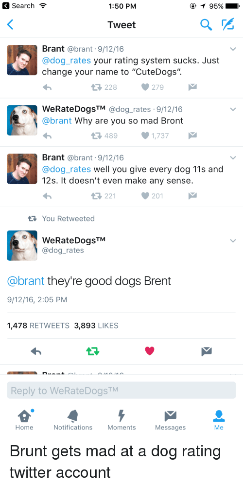 Dog Rating Twitter They Re Good Dogs