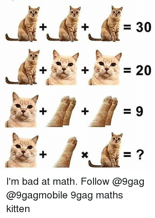 9gag, Bad, and Memes: =30  2 I'm bad at math. Follow @9gag @9gagmobile 9gag maths kitten