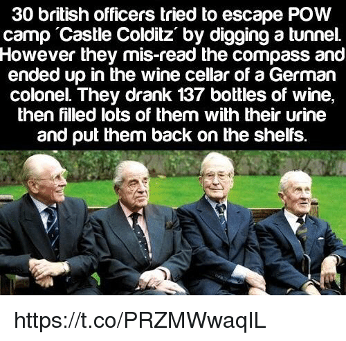 Memes, Wine, and British: 30 british officers tried to escape POW  camp Castle Colditz by digging a tunnel.  However they mis-read the comρass and  ended up in the wine cellar of a German  colonel. They drank 137 bottles of wine,  then filled lots of them with their urine  and put them back on the shelfs https://t.co/PRZMWwaqIL