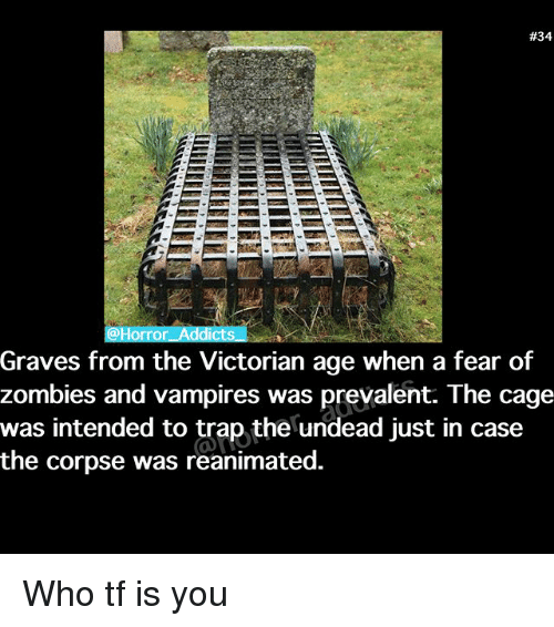 Memes, Trap, and Zombies:  #34  orror Addicts  Graves from the Victorian age when a fear of  zombies and vampires was prevalent. The cage  was intended to trap the undead just in case  the corpse was reanimated. Who tf is you