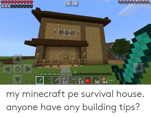 344 My Minecraft Pe Survival House Anyone Have Any Building