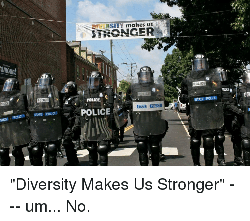 Image result for diversity police meme