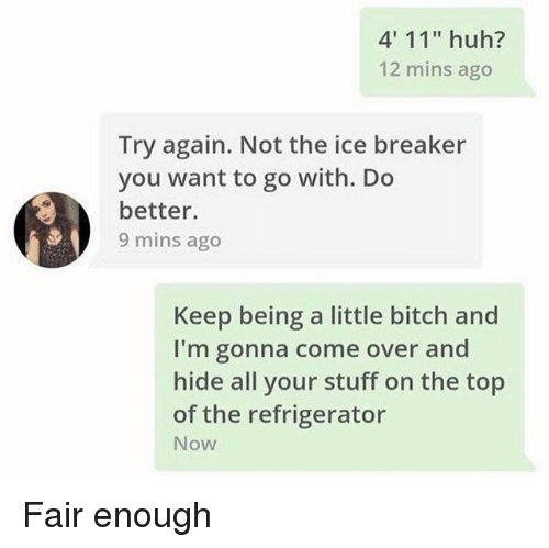 "Bitch, Come Over, and Funny: 4' 11"" huh?  12 mins ago  Try again. Not the ice breaker  you want to go with. Do  better.  9 mins ago  Keep being a little bitch and  I'm gonna come over and  hide all your stuff on the top  of the refrigerator  Now Fair enough"