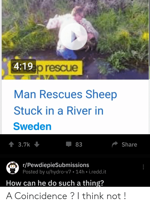 Sweden, Coincidence, and How: 4:19 p rescue  Man Rescues Sheep  Stuck in a River in  Sweden  t 3.7k  Share  83  r/PewdiepieSubmissions  Posted by u/hydro-v7 . 14h. i.redd.it  How can he do such a thing? A Coincidence ? I think not !