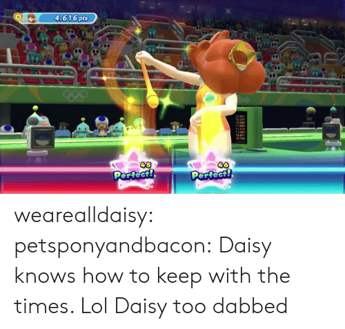 Lol, Tumblr, and Blog: 4.616 pts  7.34  12.23  12.086  1.804  1.37  11.083  10.841  0.790 wearealldaisy: petsponyandbacon: Daisy knows how to keep with the times. Lol Daisy too dabbed