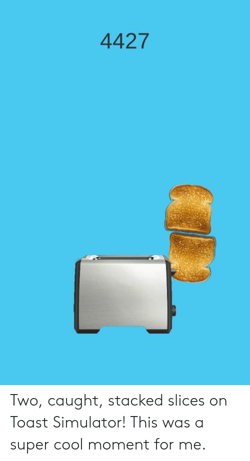 875c879b51d 4427 Two Caught Stacked Slices on Toast Simulator! This Was a Super ...