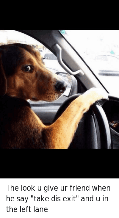 """The look u give ur friend when he say """"take dis exit"""" and u in the left lane : The look u give ur friend when he say """"take dis exit"""" and u in the left lane The look u give ur friend when he say """"take dis exit"""" and u in the left lane"""