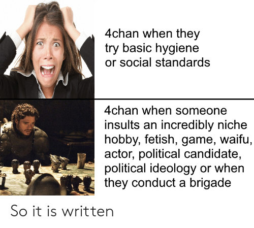4chan, Game, and Dank Memes: 4chan when they  try basic hygiene  or social standards  4chan when someone  insults an incredibly niche  hobby, fetish, game, waifu,  actor, political candidate,  political ideology or when  they conduct a brigade So it is written