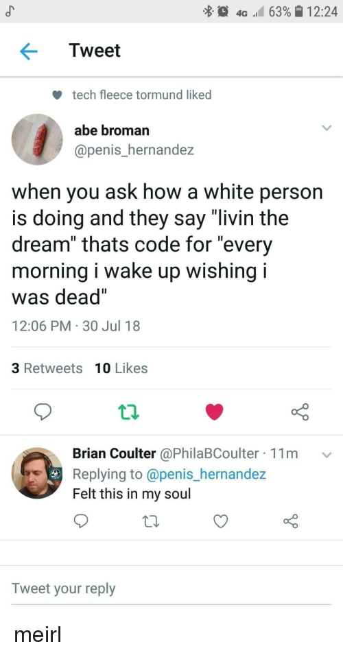 """Penis, White, and MeIRL: 4G 63% 12:24  Tweet  tech fleece tormund liked  abe broman  @penis_hernandez  when you ask how a white person  is doing and they say """"livin the  dream"""" thats code for """"every  morning I wake up wishing I  was dead""""  12:06 PM 30 Jul 18  3 Retweets 10 Likes  Brian Coulter @PhilaBCoulter 11m v  Replying to @penis_hernande:z  Felt this in my soul  Tweet your reply meirl"""