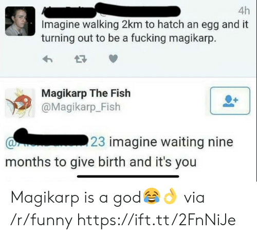 Fucking, Funny, and God: 4h  Imagine walking 2km to hatch an egg and it  turning out to be a fucking magikarp  Magikarp The Fish  @Magikarp_Fish  23 imagine waiting nine  months to give birth and it's you Magikarp is a god😂👌 via /r/funny https://ift.tt/2FnNiJe