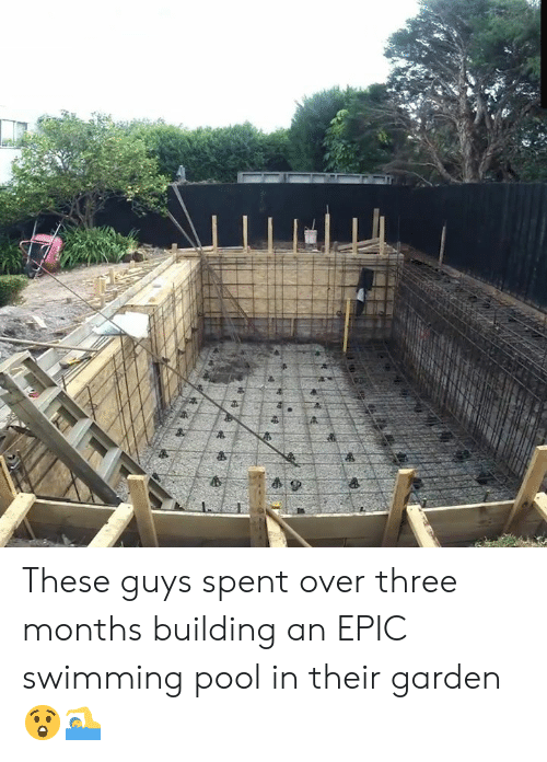 Dank, Pool, and Swimming: 4P These guys spent over three months building an EPIC swimming pool in their garden 😲🏊