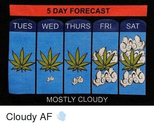 Af, Weed, and Forecast: 5 DAY FORECAST  TUES WED THURS FRI SAT  MOSTLY CLOUDY Cloudy AF 💨