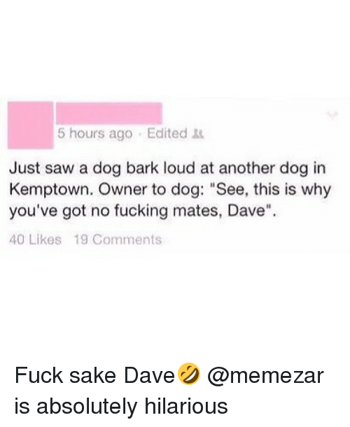 """Saw, British, and Hilarious: 5 hours ago Edited  Just saw a dog bark loud at another dog in  Kemptown. Owner to dog: """"See, this is why  you've got no fucking mates, Dave""""  40 Likes 19 Comments Fuck sake Dave🤣 @memezar is absolutely hilarious"""