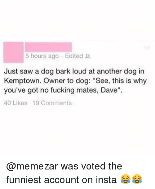 "Fucking, Memes, and Saw: 5 hours ago Edited  Just saw a dog bark loud at another dog in  Kemptown. Owner to dog: ""See, this is why  you've got no fucking mates, Dave""  40 Likes 19 Comments @memezar was voted the funniest account on insta 😂😂"
