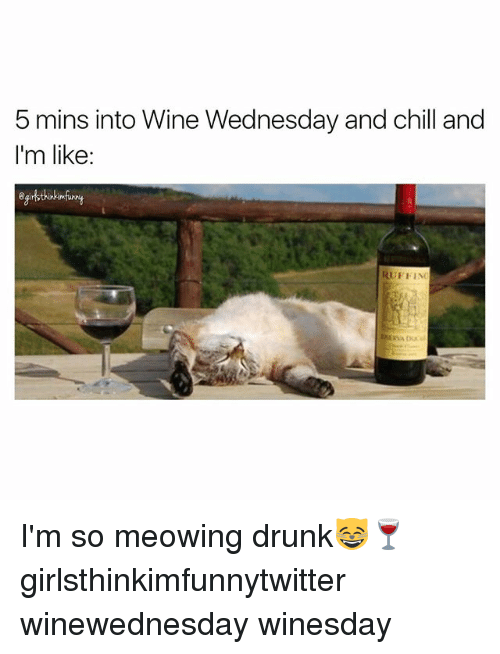 Chill, Drunk, and Funny: 5 mins into Wine Wednesday and chill and  I'm like:  erthinkmfiny  RUFFINo I'm so meowing drunk😸🍷 girlsthinkimfunnytwitter winewednesday winesday
