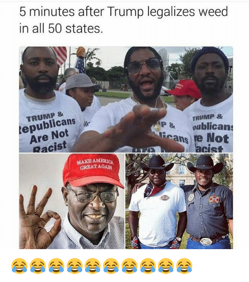 Memes, Racist, and All 50 States: 5 minutes after Trump legalizes weed  in all 50 states.  TRUMP &  Republicans  AP gublican  ans Not  Racist  MAKE AMERICA  GREAT AGAIN 😂😂😂😂😂😂😂😂😂😂