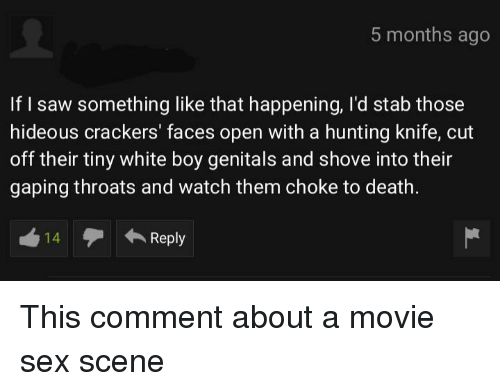 Saw, Sex, and Hunting: 5 months ago  If I saw something like that happening, l'd stab those  hideous crackers' faces open with a hunting knife, cut  off their tiny white boy genitals and shove into their  gaping throats and watch them choke to death.  14Reply