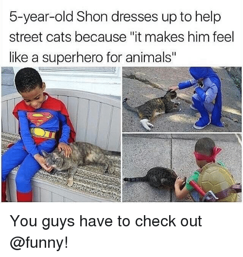 "Animals, Cats, and Funny: 5-year-old Shon dresses up to help  street cats because ""it makes him feel  like a superhero for animals"" You guys have to check out @funny!"