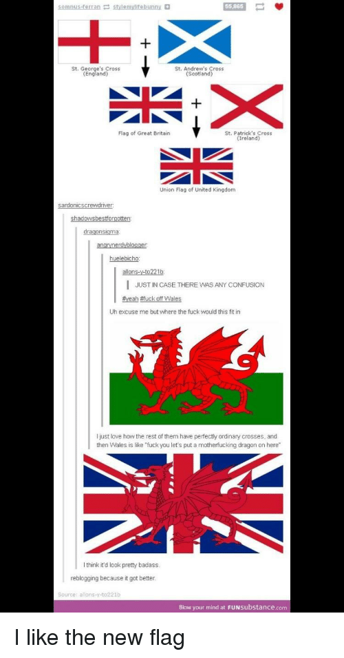 """England, Fuck You, and Funny: 55,865  St. Geo  s Cross  St. Andrew's Cross  (Scotland)  England)  Flag of Great Britain  St. Patrick's Cross  (Ireland)  Union Flag of United Kingdom  ne  er  I JUST IN CASE THERE WAS ANY CONFUSION  #yeah-uck off Wales  Uh excuse me but where the fuck would this fit in  I just love how the rest of them have perfectly ordinary crosses, and  then Wales is like """"fuck you let's put a motherfucking dragon on here""""  I think it'd look pretty badass  reblogging because it got better  Source: allons-y-to221b  Blow your mind at FUNsubstance.com"""