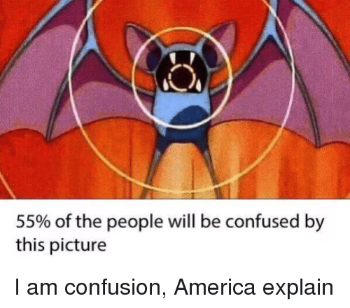 America, Confused, and Will: 55% of the people will be confused by  this picture I am confusion, America explain