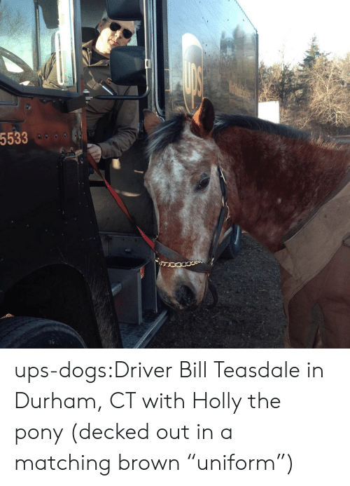 "Dogs, Target, and Tumblr: 5533  o9 ups-dogs:Driver Bill Teasdale in Durham, CT with Holly the pony (decked out in a matching brown ""uniform"")"