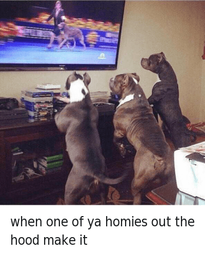 Ghetto, Homie, and Money: when one of ya homies out the hood make it when one of ya homies out the hood make it
