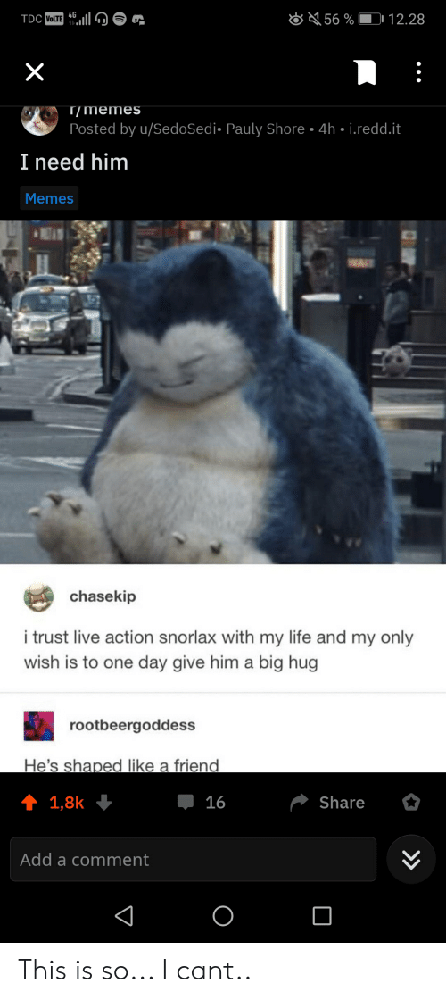 Life, Memes, and Live: 56% 12.28  TDC VOLTE 4G  X  T/memes  Posted by u/SedoSed i- Pauly Shore  4h i.redd.it  I need him  Memes  chasekip  i trust live action snorlax with my life and my only  wish is to one day give him a big hug  rootbeergoddess  He's shaped like a friend  t 1,8k  Share  16  Add a comment  ( » This is so... I cant..