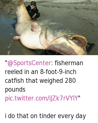 """@SportsCenter: fisherman reeled in an 8-foot-9-inch catfish that weighed 280 pounds ""-i do that on tinder every day: SG  @SGThreeZ  ""@SportsCenter: fisherman reeled in an 8-foot-9-inch catfish that weighed 280 pounds""  i do that on tinder every day ""@SportsCenter: fisherman reeled in an 8-foot-9-inch catfish that weighed 280 pounds ""-i do that on tinder every day"