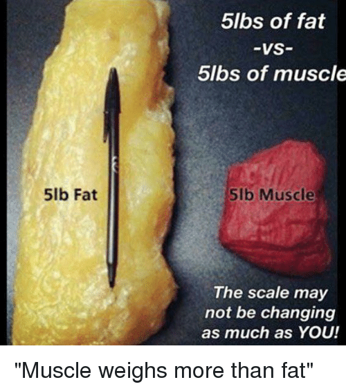 More fat than you can handle 3