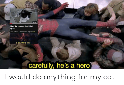 Dank Memes, Hero, and Cat: 6:28  Killed the coyotes that killed  my cat  20K views . 6 months ago . 93%  a soul for a soul  carefully, he's a hero I would do anything for my cat