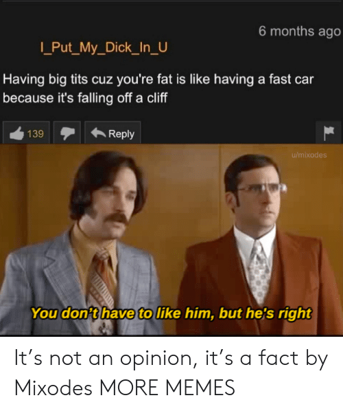 Dank, Memes, and Target: 6 months ago  Put_My_Dick_In_U  Having big tits cuz you're fat is like having a fast car  because it's falling off a cliff  139  Reply  u/mixodes  You don't have to like him, but he's right It's not an opinion, it's a fact by Mixodes MORE MEMES